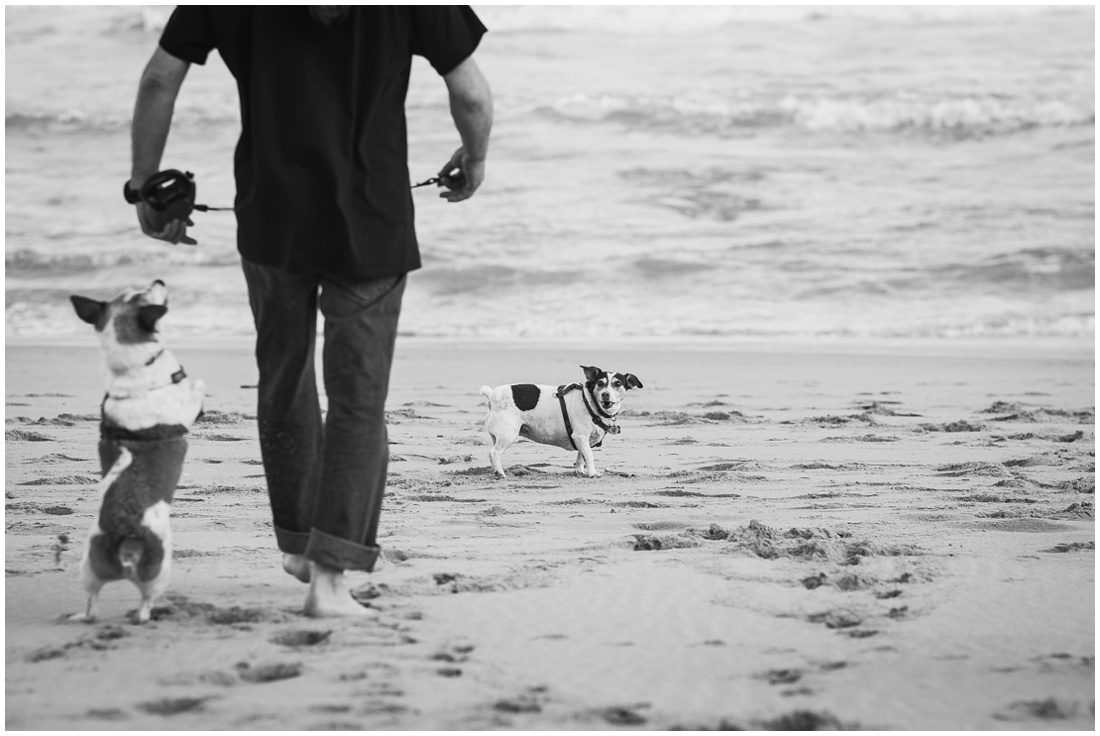 garden route couple and family portraits - mossel bay smit with k9 kids-16