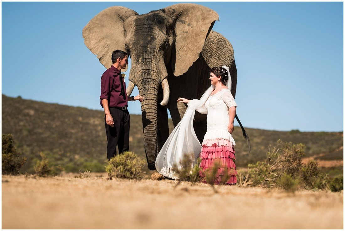 garden-route-wedding-indalu-lodge-fannie-and-joyce-couple-shoot-4