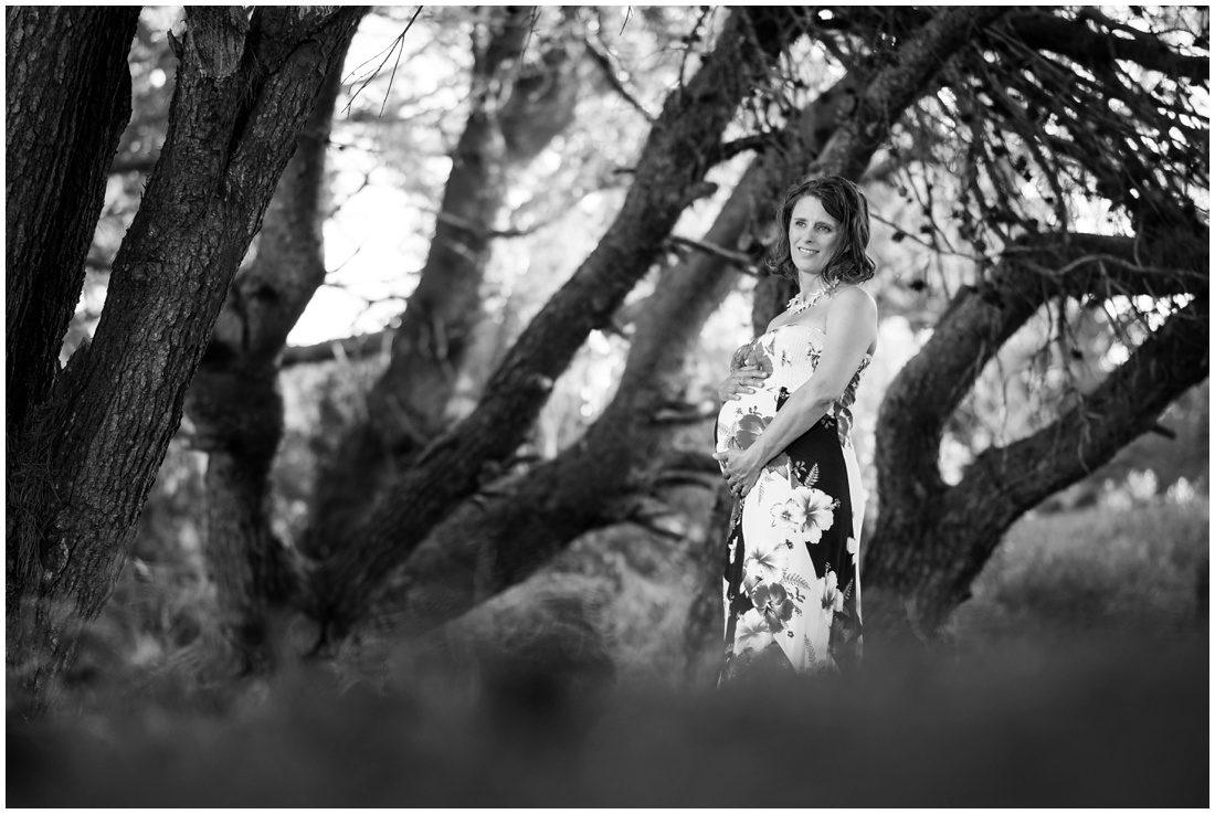 maternity portraits - suzelle_0007
