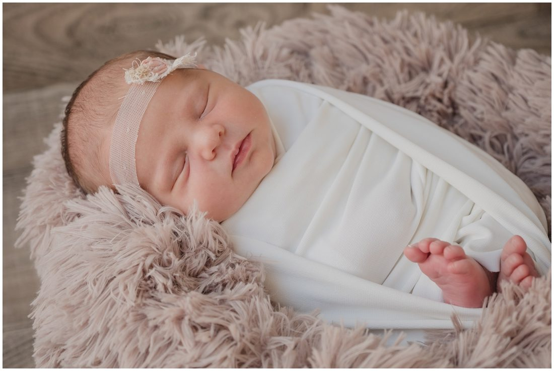 garden route newborn studio portraits steyn family_0010