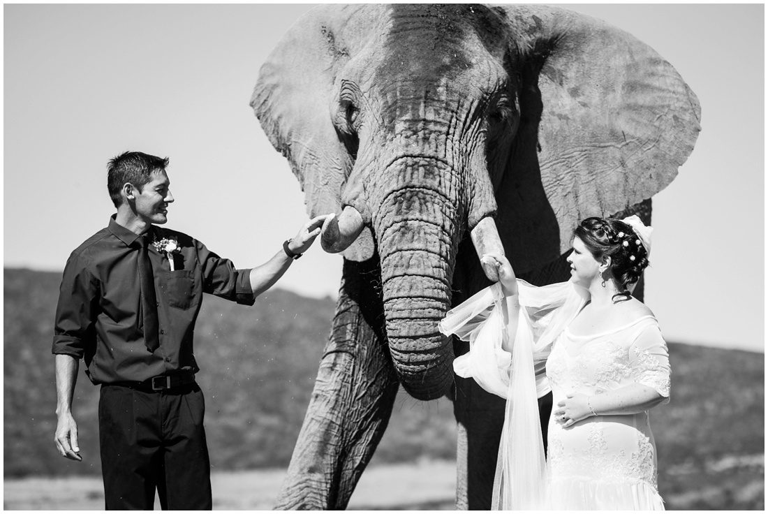 garden-route-wedding-indalu-lodge-fannie-and-joyce-couple-shoot-3