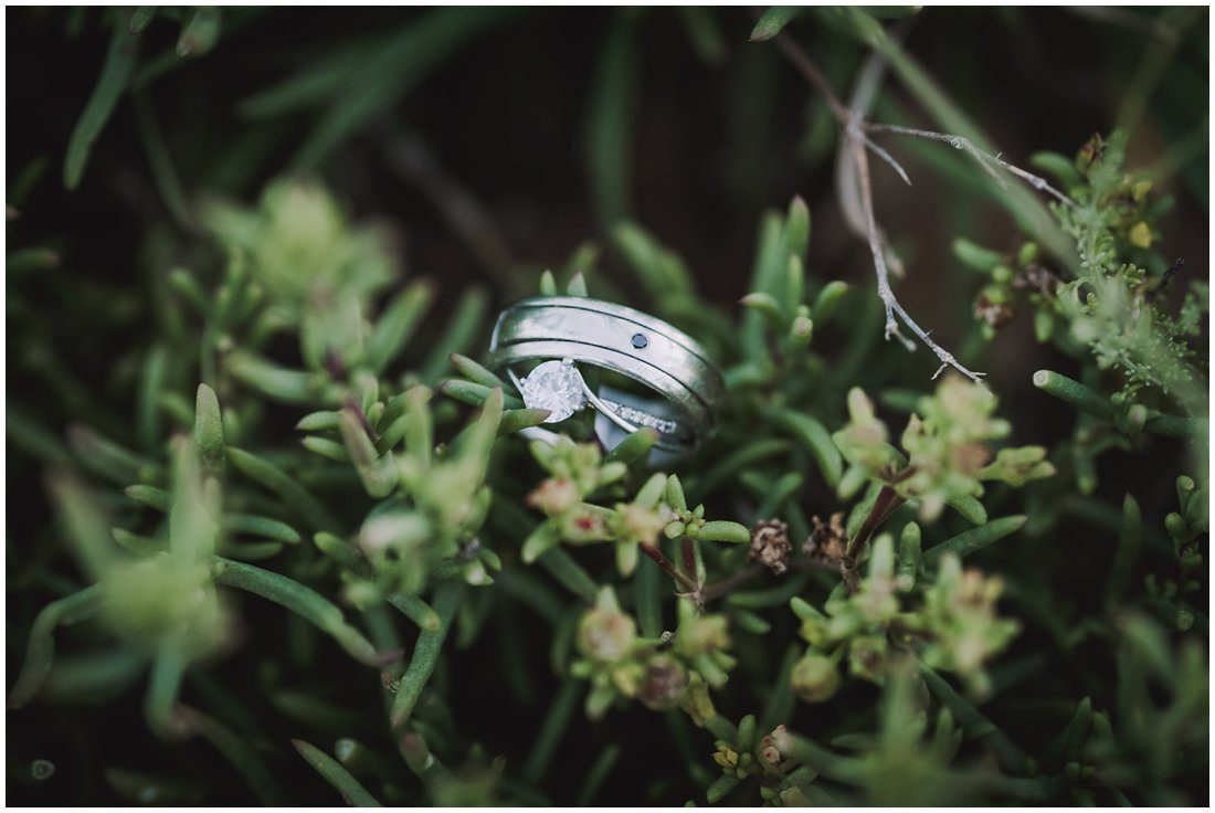 klein karoo wedding lari & edwin_0091